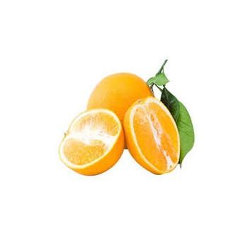 پرتقال کوهستان