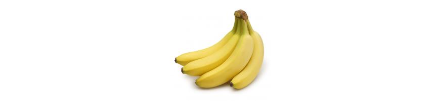 فروش اینترنتی انواع میوه با قیمت عمده ای